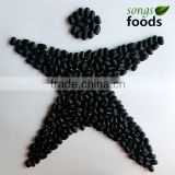 Dried Black Kidney Beans Chinese Black Bean