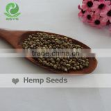 Well selected hemp seeds for Bird