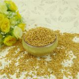 Chinese high quality 100% natural yellow millet in husk exporter