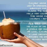 BULK COCONUT WATER - COMPETITIVE PRICE