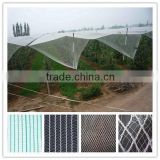 2016 apple tree plastic agriculture anti hail net apple tree anti hail net