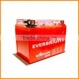 Wholesale importer of Chinese dry charged rechargeable long recycle life lawn mower battery purchase