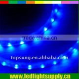 Blue color 230V LED strip Topsung decorative light bulb with 2 year warranty led rope lights(round rope light)