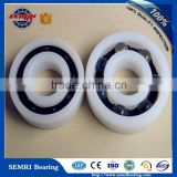 Germany Glass Balls Bearing 10*22*6mm Plastic Bearing POM 6900