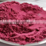 xi'an dn biology supply Red Beet Root Juice Powder Beta vulgaris