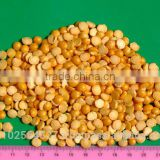 Yellow split polished peas from Ukraine