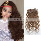 Youth Beauty Hair top quality brazilian virgin human clip in hair extension in body wave full cuticle can be dyed 9A grade