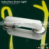 greenhouse use equal induction lamps high lumen 400w led grow light