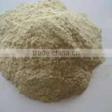 Food grade Vital wheat gluten