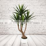 Potted Artificial Sword leaves Plants, Fake Decorative Yucca