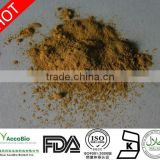 Natural Rhodiola root Extract with 3% total Rosavins and 1% Salidroside