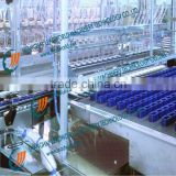 automatic petrol filling machine,automatic liquid filling machine,automatic filling sealing machine