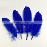 wholesale dyed royal blue goose feathers colored for sale