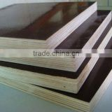 Anti-slip film faced plywood for building, shuttering plywood board, Dynea film faced plywood