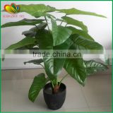 interior decoration cheap artificial bonsai tree price for sale