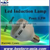 LED Induction lamp