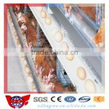 Good price poultry control shed farm equipments for chicken rearing