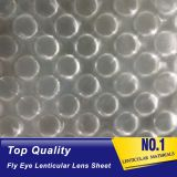 latest fly eye lens film good quality PP 3d fly eye lenticular lens sheet