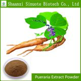 Factory Supply Directly Pueraria Extract Powder