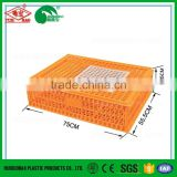 Cheap pigeon transport cage reusable bird cage Chinese plastic chicken coop