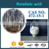 Factory Supply Best Quality Antioxidant birch bark extract CAS NO.472-15-1 Betulinic acid