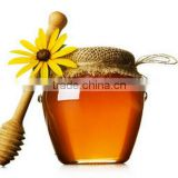 bee honey/fresh royal jelly/bee pollen/foundation/propolis