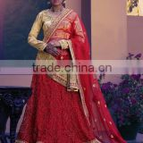 Cursorial Red Brasso Net Lehenga Choli/fancy lehenga choli/Lehenga Choli Wholesaler In India
