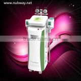 Guarantee three years warranty and one life maintains cryolipolysis weight loss slimming equipment
