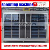 Good quality Alfalfa seed growing machine/mung bean sprout machine