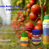 Agrochem/ Soluble Fertlizers / Amino Acid liquid / Powder Fertilizers