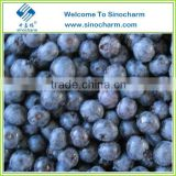 Hot Sale Bulk Frozen Blueberry Fruit