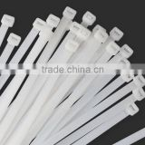 INquiry about Self Locking plastic Cable ties 8""