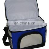 Food Use Thermal Cold Pack Type Cool Ice Bag