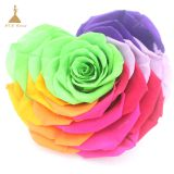 10cm Big Heart-Shape Preserved Rainbow Rose Flower