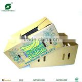 FRESH BANANA PACKAGING BOX 20KG