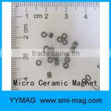 selling good quality customized size ferrite ring magnet