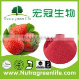 low price 5:1, ,20:1,5%,10% organic strawberry powder