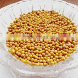 JSX China yellow mung bean food grade dried moong dal