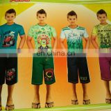 100% cotton T-Shirts Model 2012