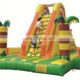 Adult Size Inflatable Water Slide For Water Game, Slip And Slide For Adult, Exciting Inflatable Slide