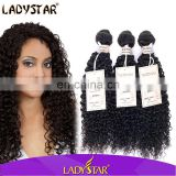 Soft and Bouncy Texture Afro Kinky Curly Hair Weave/kinky curly Peruvian Virgin Human hair from HY Fatory Store