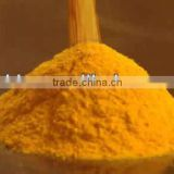 sale spray dried pumpkin powder