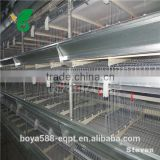 H type Broiler chicken cages for poultry farm