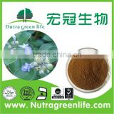 11USD relieving influenza Shrub Chastetree Fruit extract free sample factory outlet fructus viticis