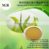 Superior health Anti-cancer Chinese Green tea extract powder for 98% Polyphenols by factory supply