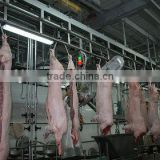 pig slaughter equipment