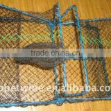 folding fish trap for sale
