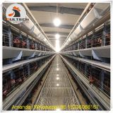 Senegal Poultry Farming Battery Chicken Cage & Layer Cage & Chicken Coop & Laying Hen Cage in Chicken House