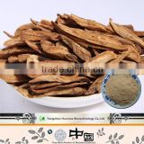 Huamao Supply natural burdock root arctium lappa extract 40% powder