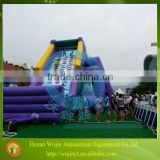 Outdoor giant inflatable water slide for sale